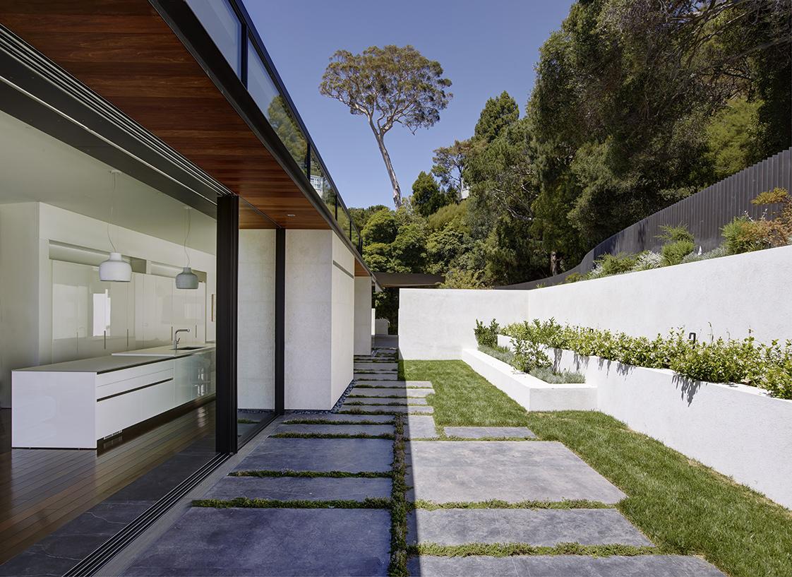 Eucalyptus Residence hillside yard