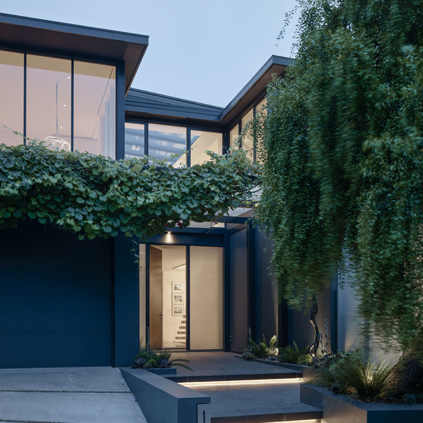 Spruce Street Residence San Francisco Exterior with Ivy and Trees at Dusk