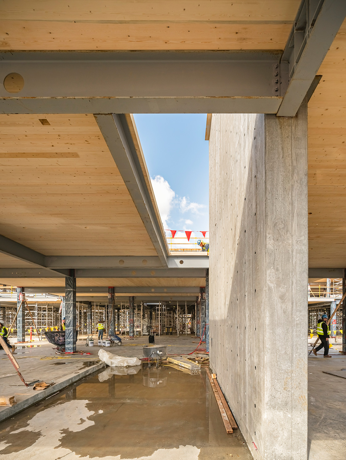 Hybrid Mass Timber Steel Structure with Concrete Shear Wall at Corporate Campus Silicon Valley